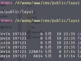 Laravel 使用 layui 文件上传组件批量上传图片