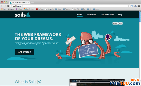 Best web framework - sails