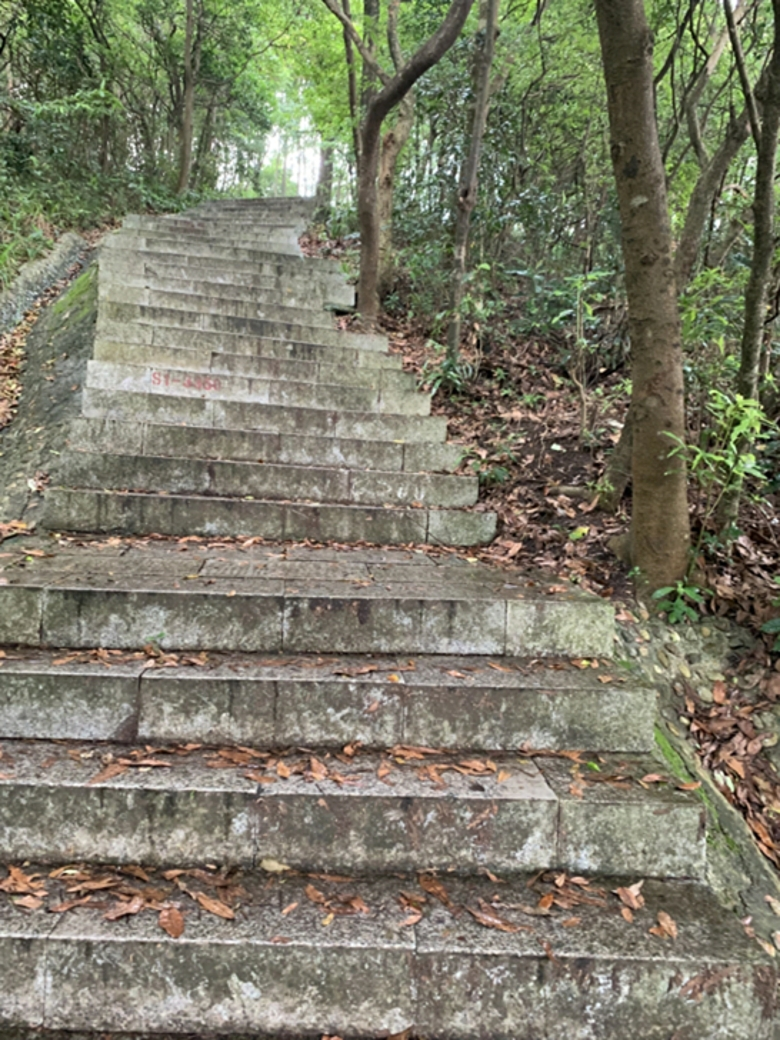 台阶与山顶的魅力
